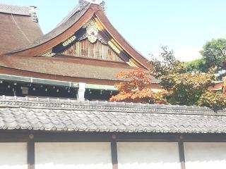 20121101京都御所 081.jpg